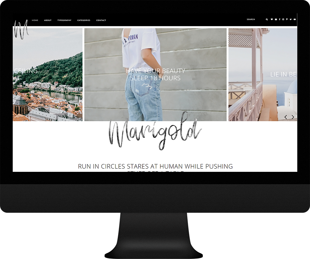 marigold wordpress