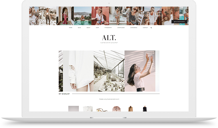 Alt wordpress theme shop
