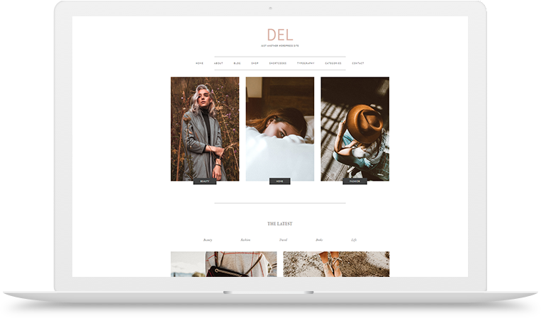 DEL responsive wordpress theme