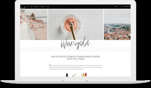 Marigold WordPress theme