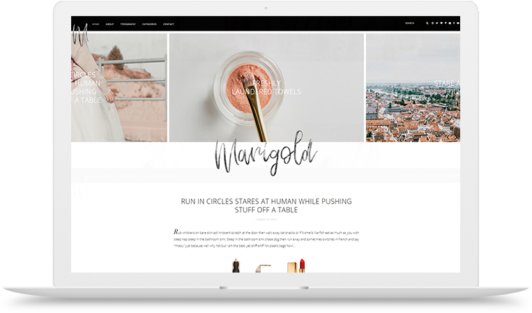 Marigold WordPress theme